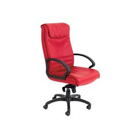 Cadeira Diretiva CF.500