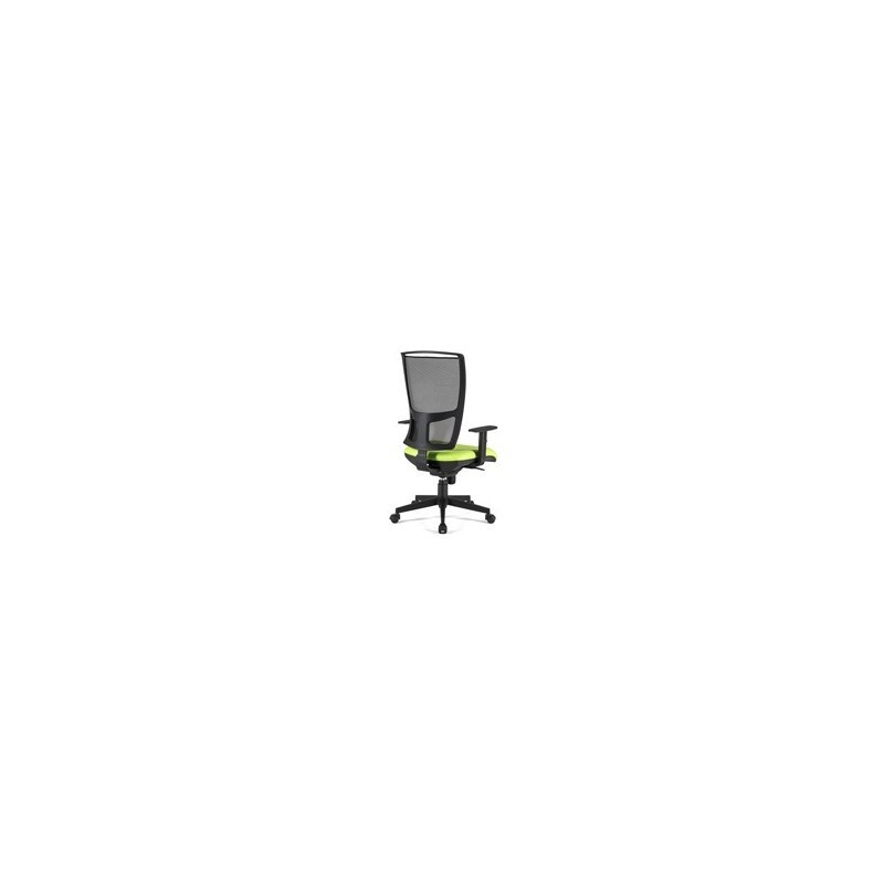 Cadeira Diretiva ZO.501